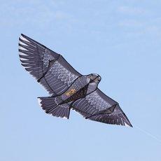 1227 Bald Eagle Kite with Kite String